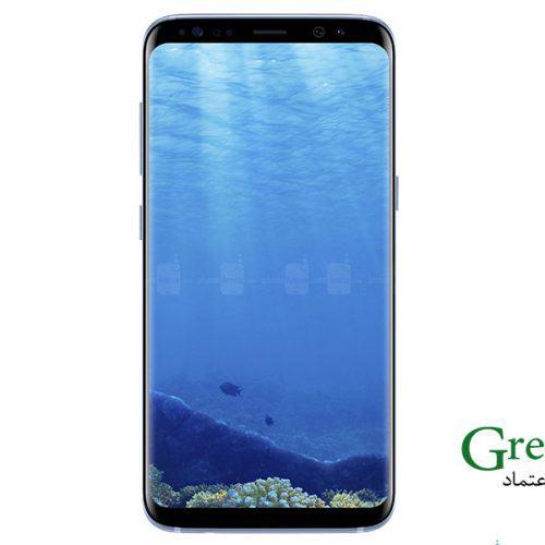 Samsung Galaxy S8 Edge G950FD (7)